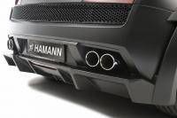 Woest: Hamann Victory II