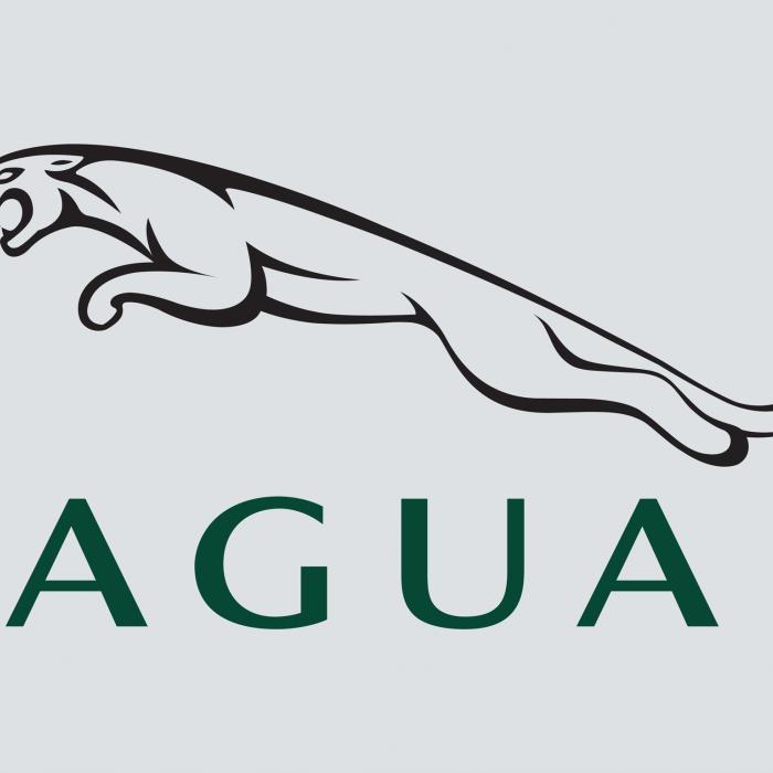 Wat betekent het Jaguar-logo? En waarom veranderde Jaguar in 1945 zijn naam?