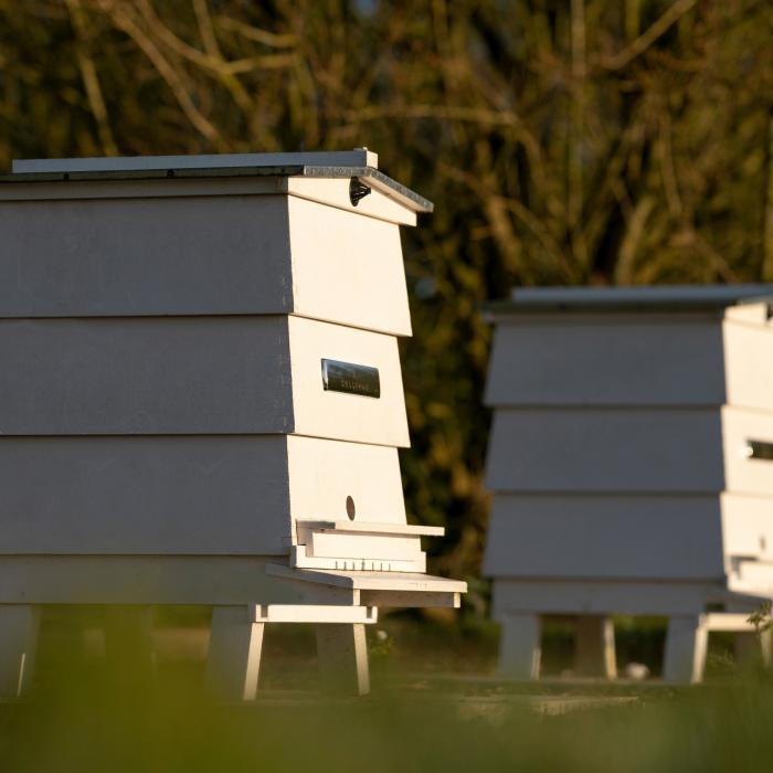 De bezige bijen van Rolls-Royce gaan nieuwe productierecord zetten