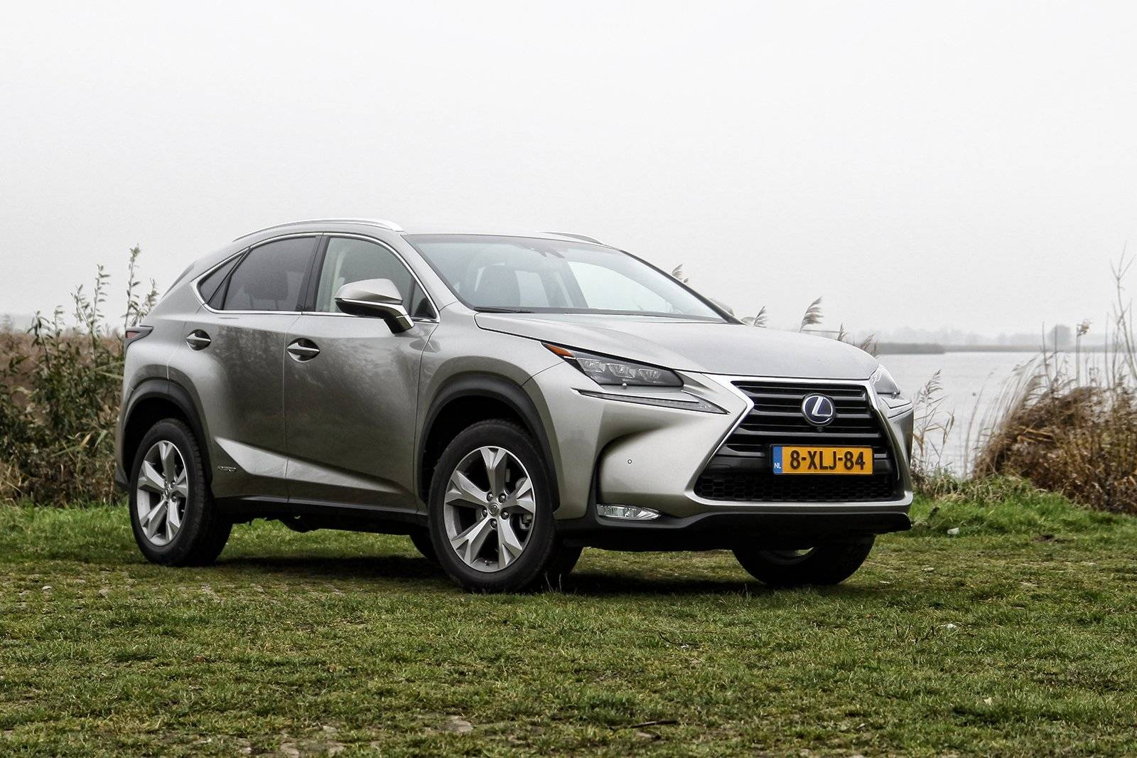 test autotest lexus nx 300h autotests. Black Bedroom Furniture Sets. Home Design Ideas